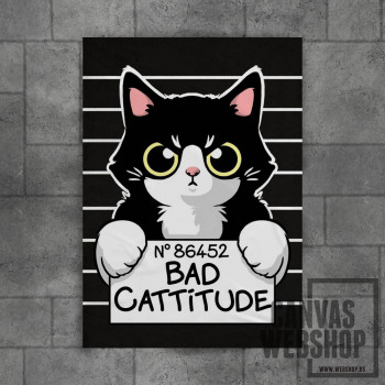 Bad cattitude cat prisoner