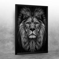 wild lion head
