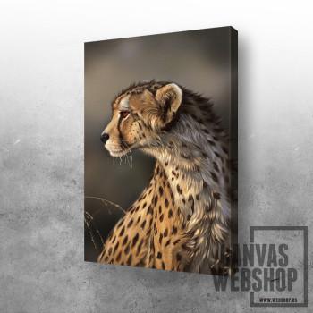 Leopard Gepa
