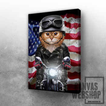Patriot Cat on Motorcycle