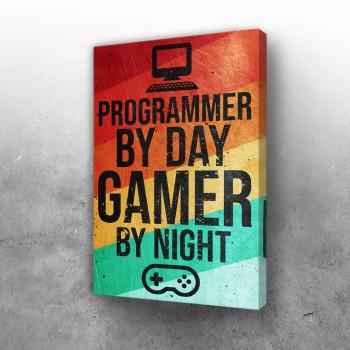 Programmer and Gamer